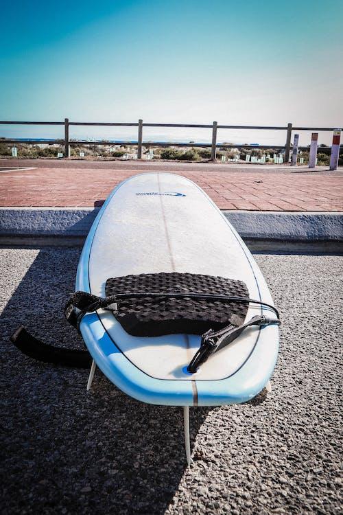 Foto d'estoc gratuïta de Austràlia, taula de surf