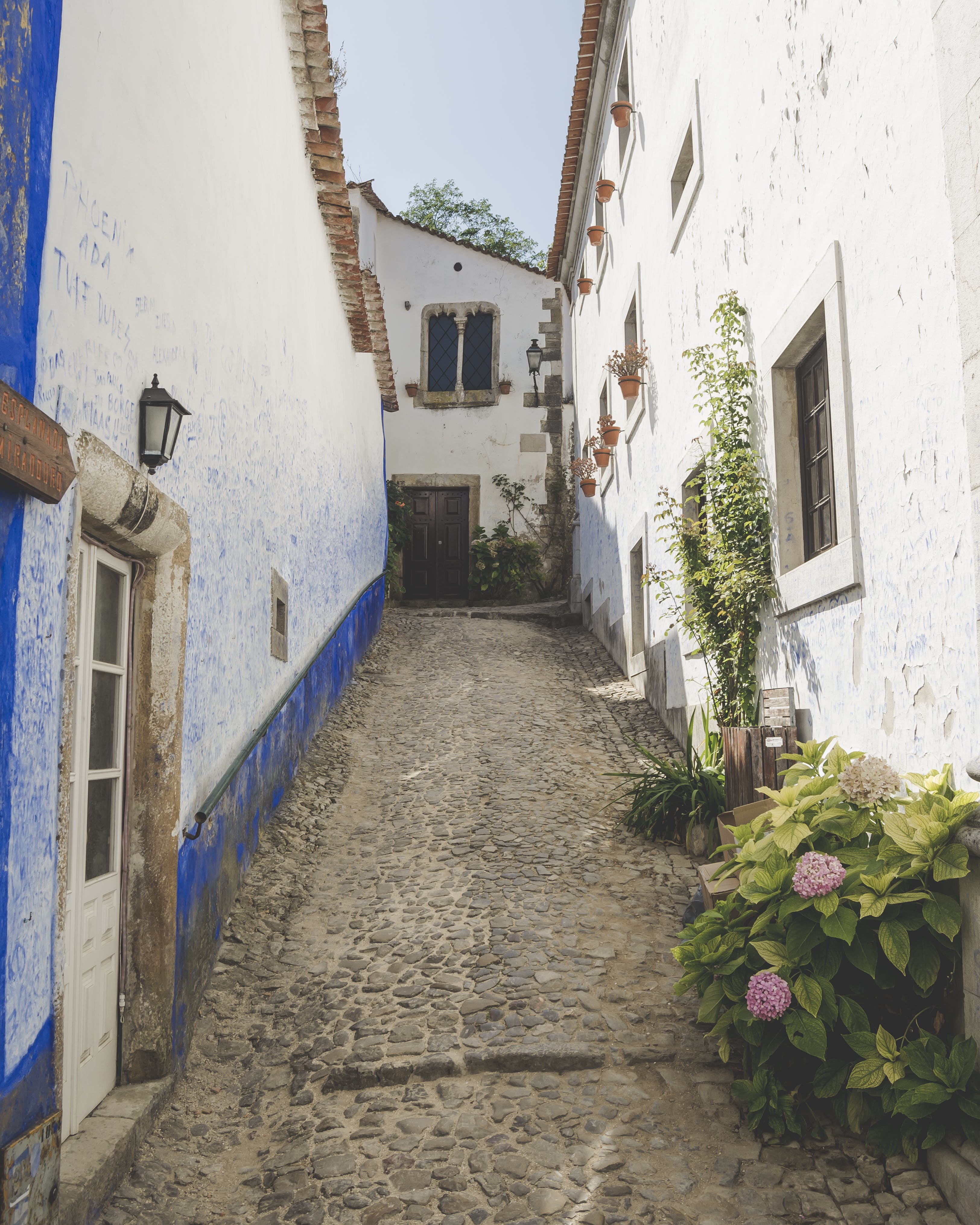 Free stock photo of amazing, colors, Obidos, old