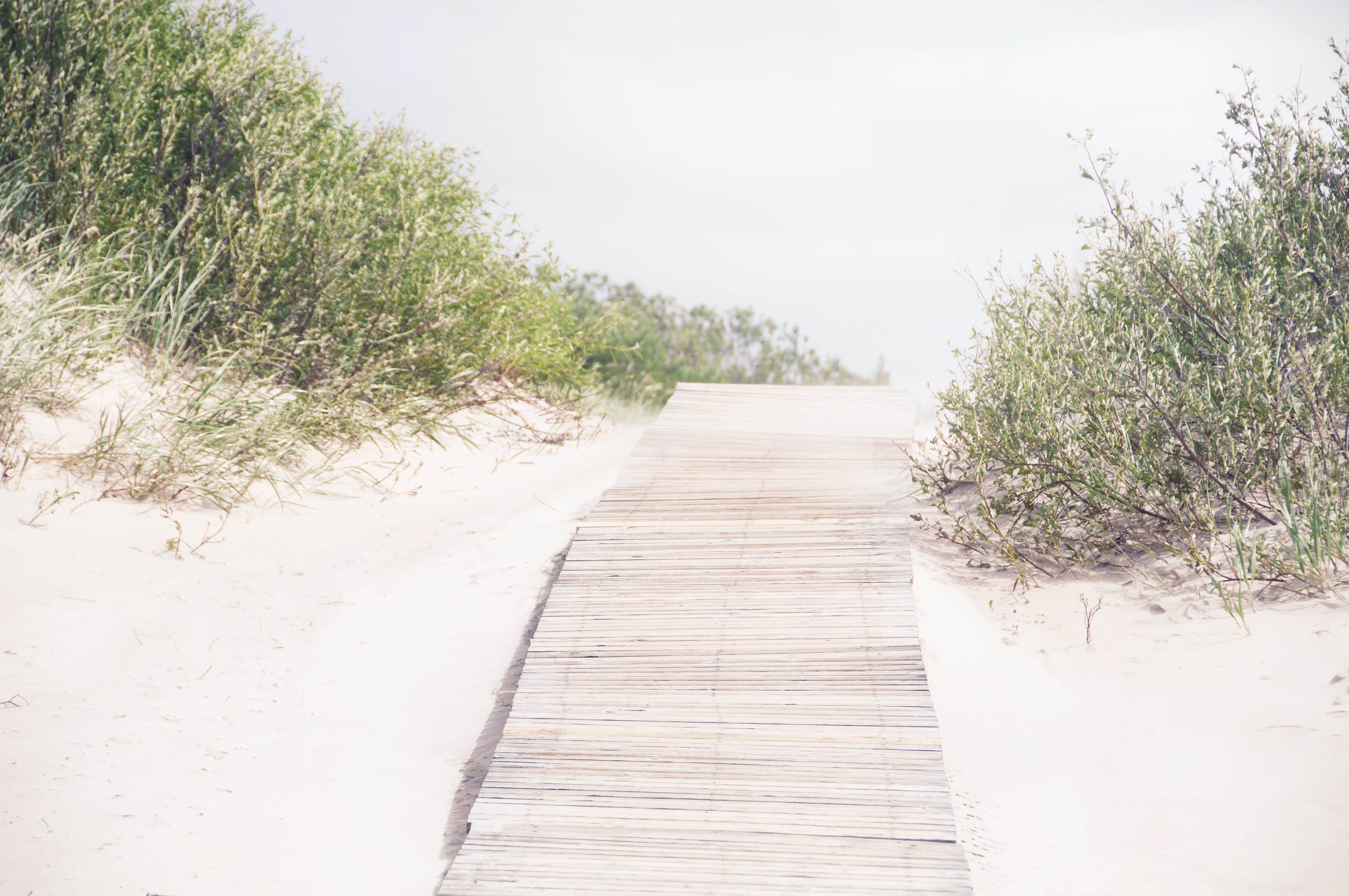 Free stock photo of empty, foot path, nobody, sand