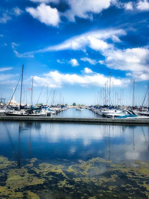 Základová fotografie zdarma na téma člun, kotviště, lodní paluba, moře