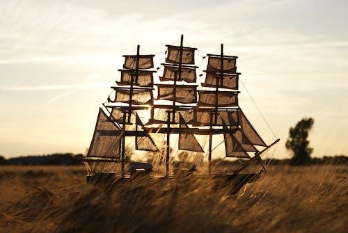 Free stock photo of field, sail, ship, summer