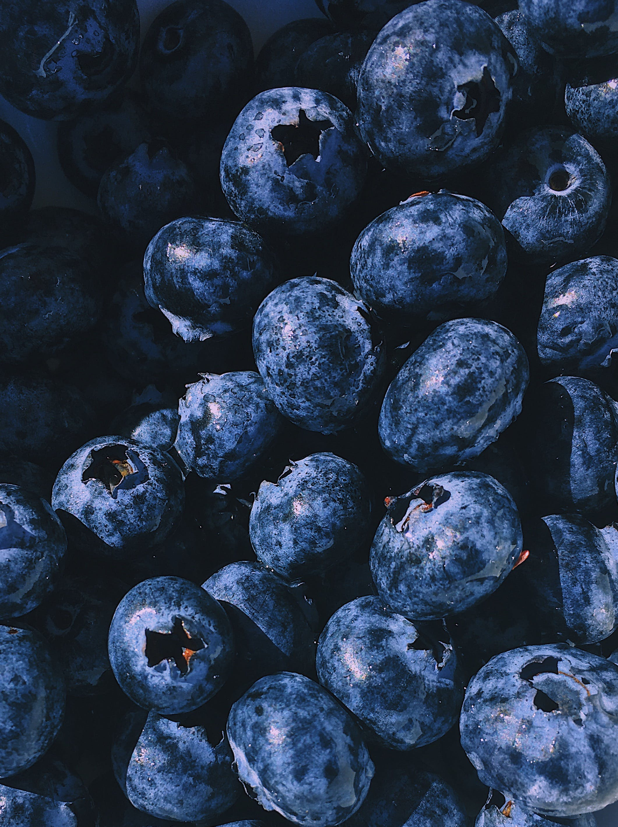 Free stock photo of food, healthy, blueberries, sweet