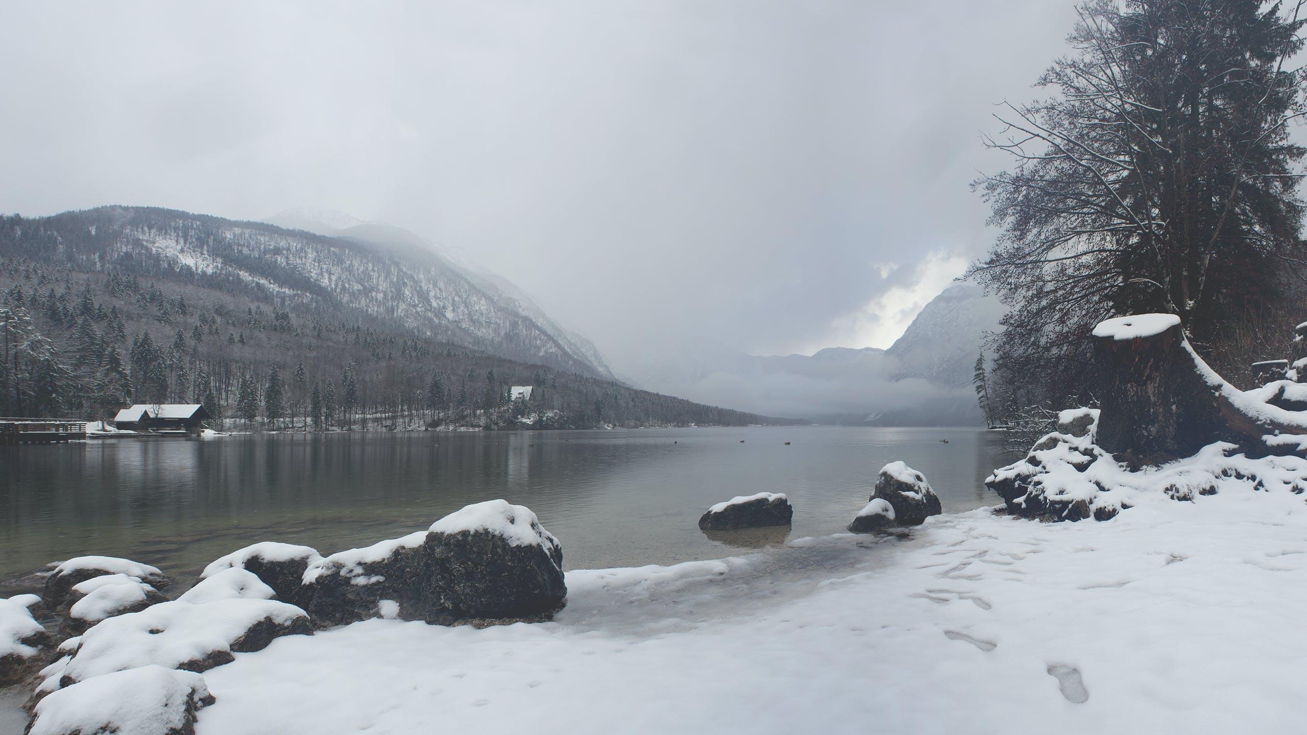 Free stock photo of fog, foggy, lake, snow
