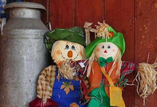 Free stock photo of farm, figures, happy, smiling
