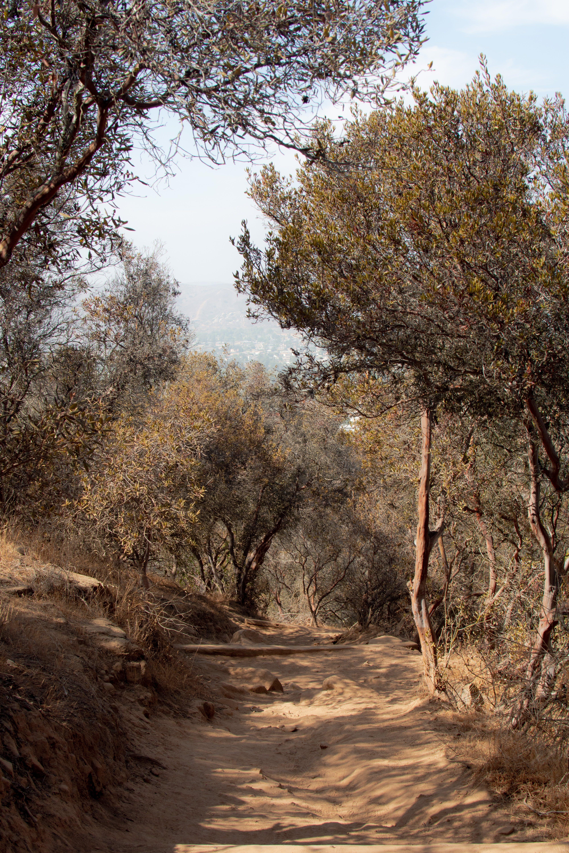 Free stock photo of california, mountain, outdoor, trekk
