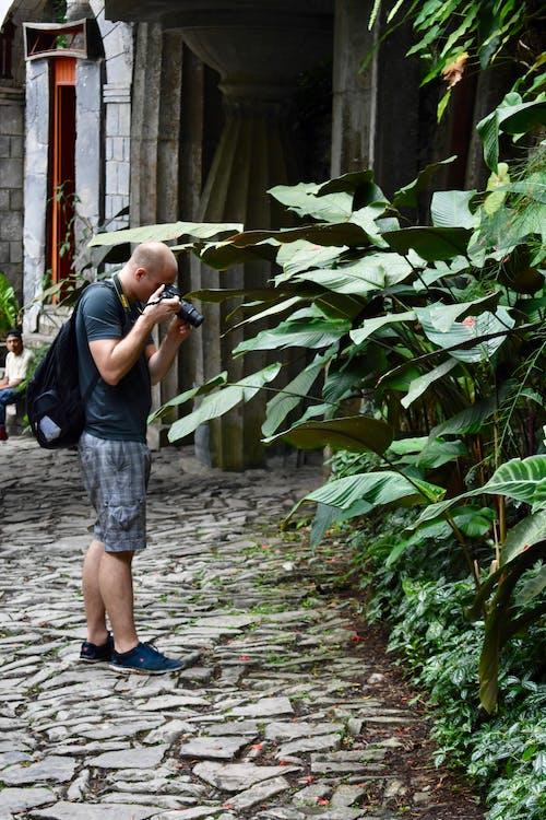 Ảnh lưu trữ miễn phí về ảnh, chụp ảnh thiên nhiên, người hói, nhiếp ảnh gia