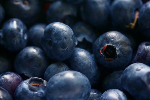 Gratis arkivbilde med antioksidant, blåbær, bær, ernæring