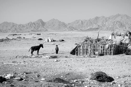 Free stock photo of black and white, Country Home, desert, farmhouse