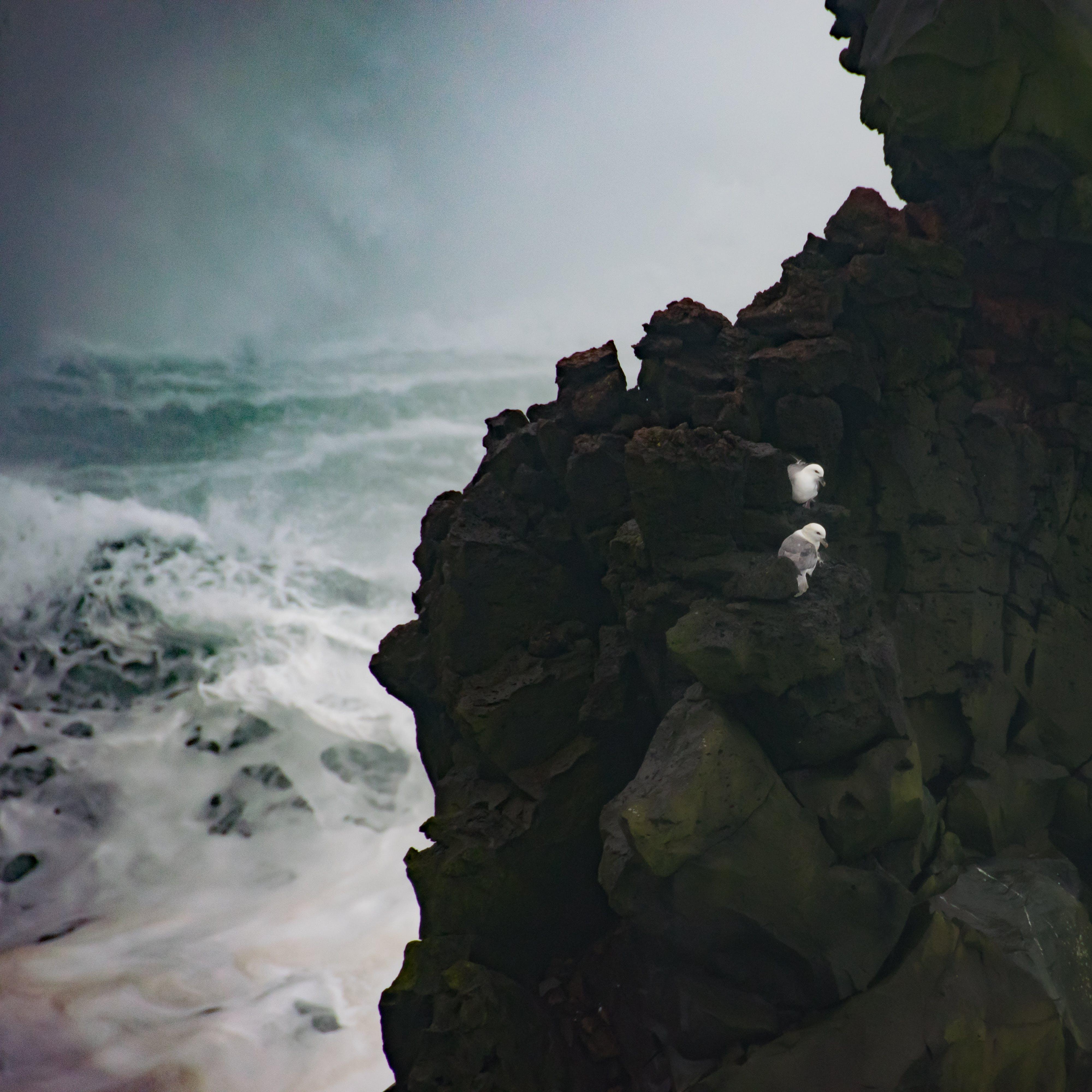 Black Rock Formation
