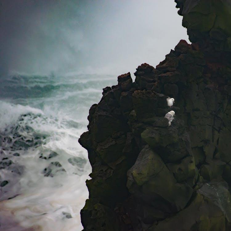 air, angin ribut, angin topan