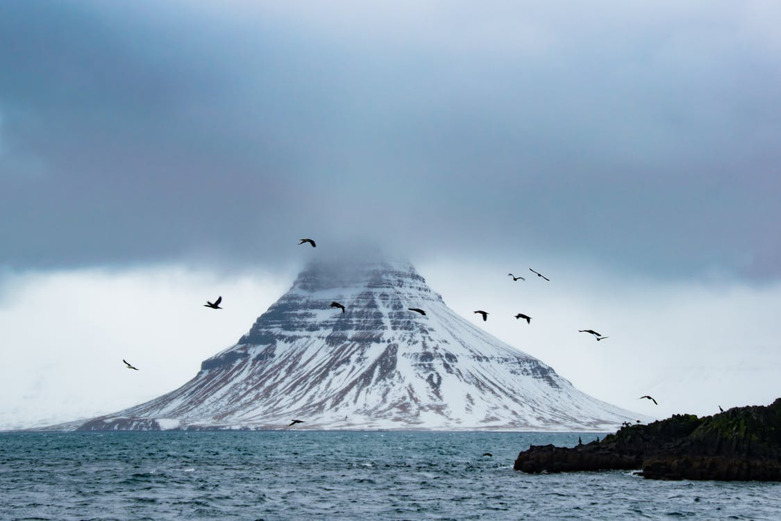 Oiseaux Sur L'air Près De La Montagne Couverte De Neige Entourée D'eau