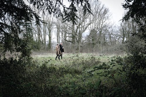 Men Walking on Forest