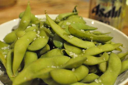 Free stock photo of beer, edamame