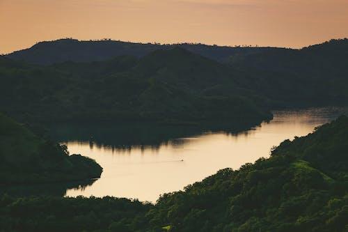 Δωρεάν στοκ φωτογραφιών με αντανακλάσεις, βουνά, δάσος, δέντρα