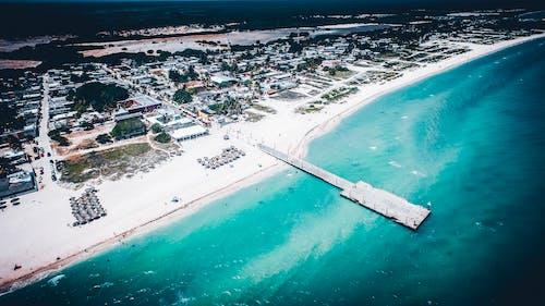 yucatã¡n, 剑麻, 海, 碼頭 的 免费素材照片