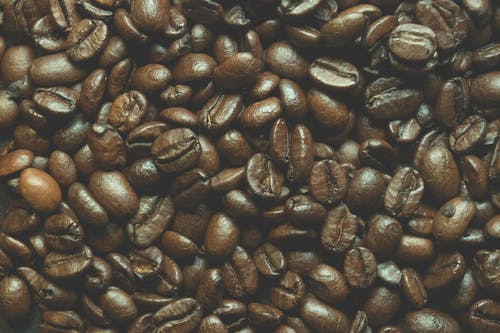 Close-up Photo of Brown Coffee Beans