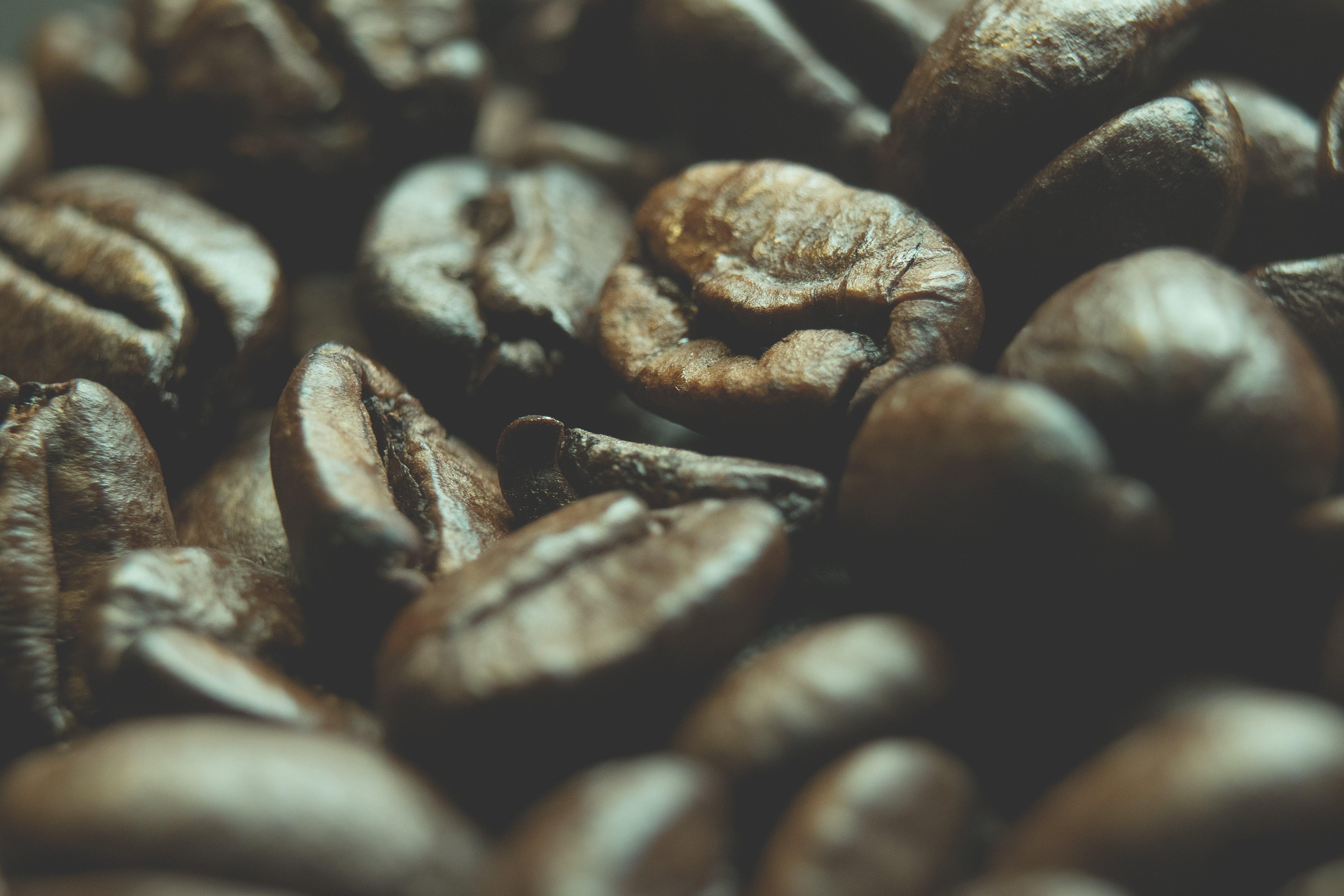 Gratis stockfoto met aromatisch, bonen, bruin, cafeïne