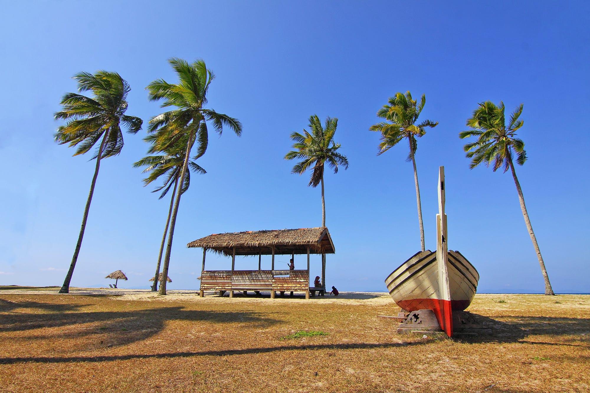 Foto profissional grátis de água, areia, árvores, azul