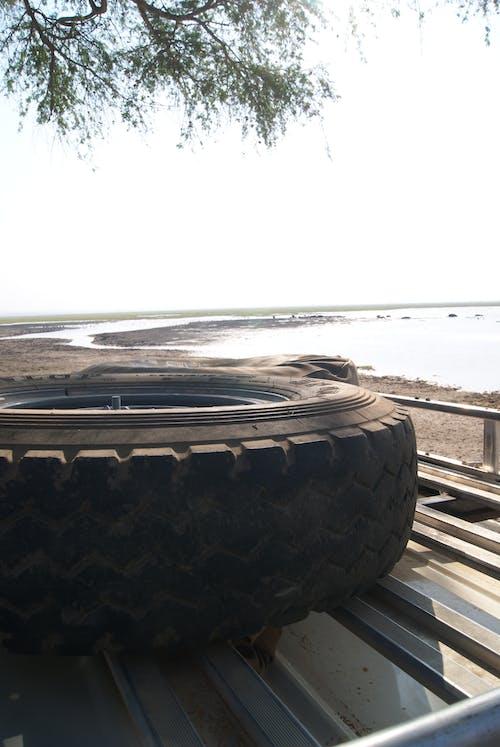 Безкоштовне стокове фото на тему «автомобіль, дах, сафарі, шина»