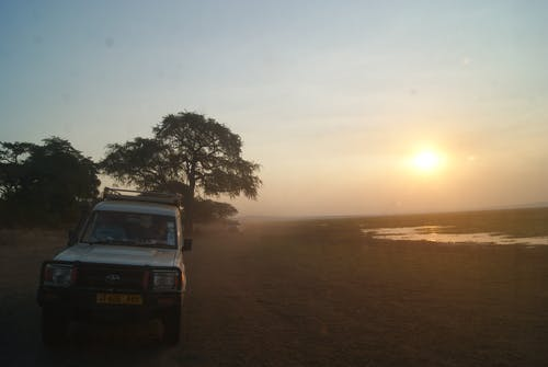 Безкоштовне стокове фото на тему «Африка, Захід сонця, сафарі»