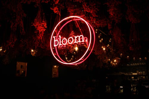 Red Bloom Neon Light Signage
