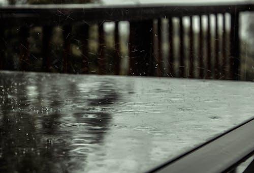 Fotobanka sbezplatnými fotkami na tému Afrika, chladný, dážď, kvapky dažďa