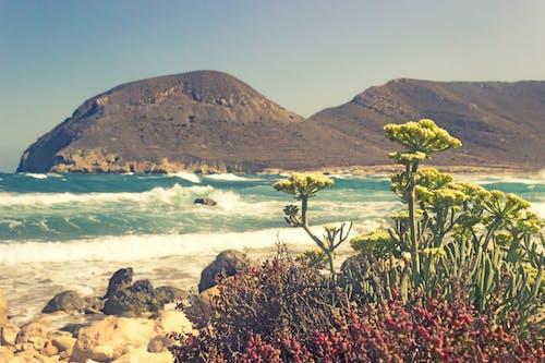 Бесплатное стоковое фото с берег, вода, волны, вулкан