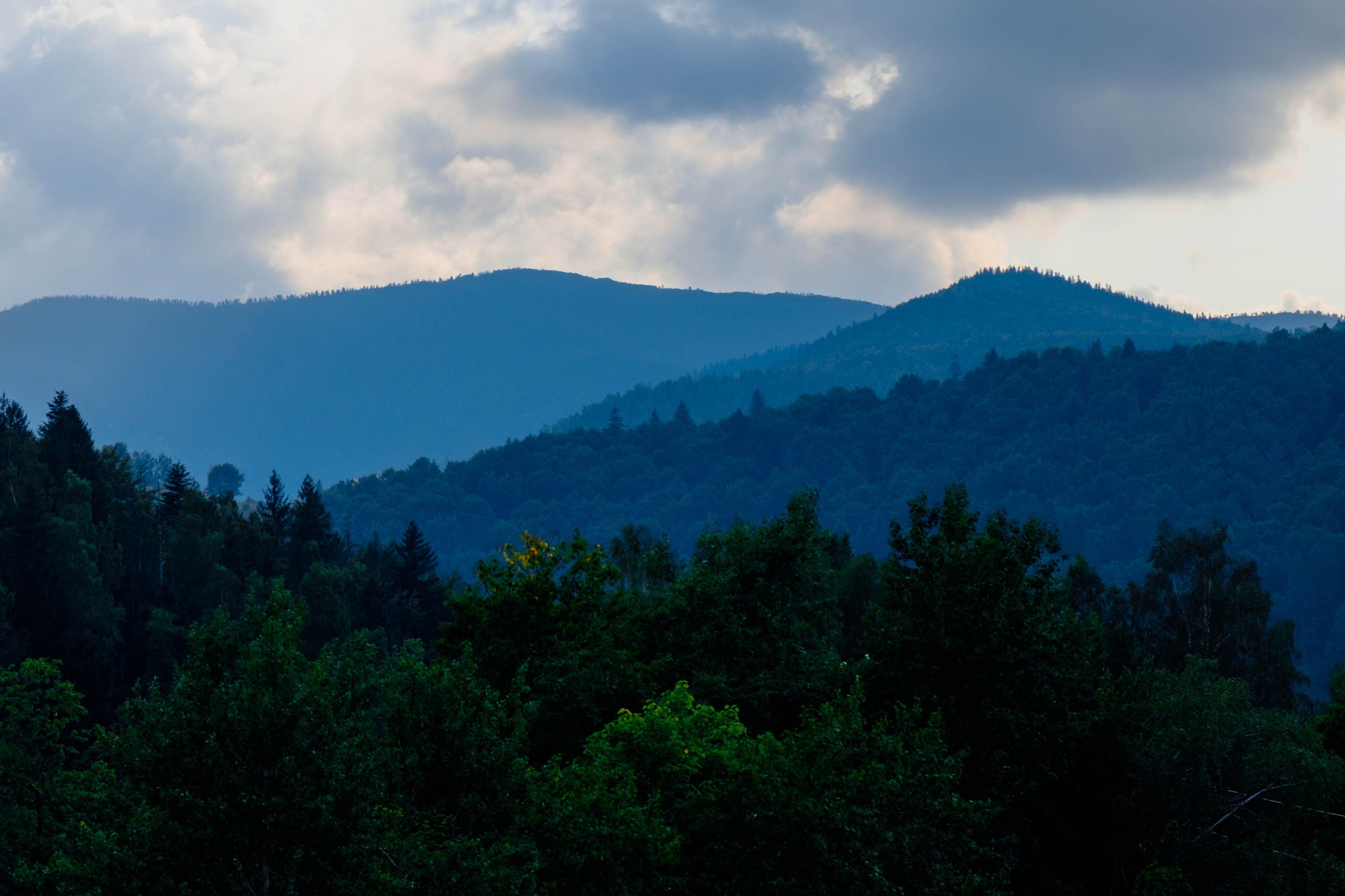Free stock photo of blue, blue mountains, dark green, mountain
