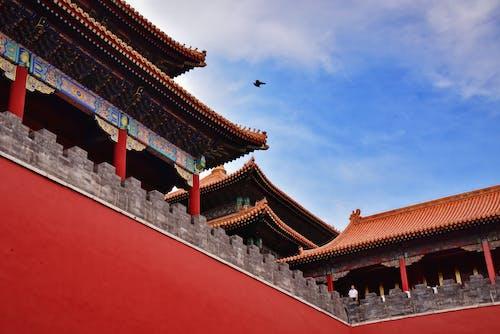 금단의 궁전, 베이징, 중국 건축물의 무료 스톡 사진