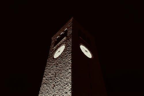 대칭적인, 밤 조명, 코넬의 무료 스톡 사진