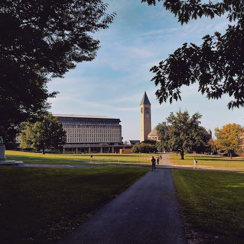 국가, 대학, 미국 대학, 엽서 이미지의 무료 스톡 사진