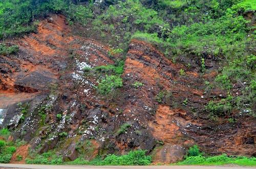 Kostenloses Stock Foto zu mullayanagiri spitze