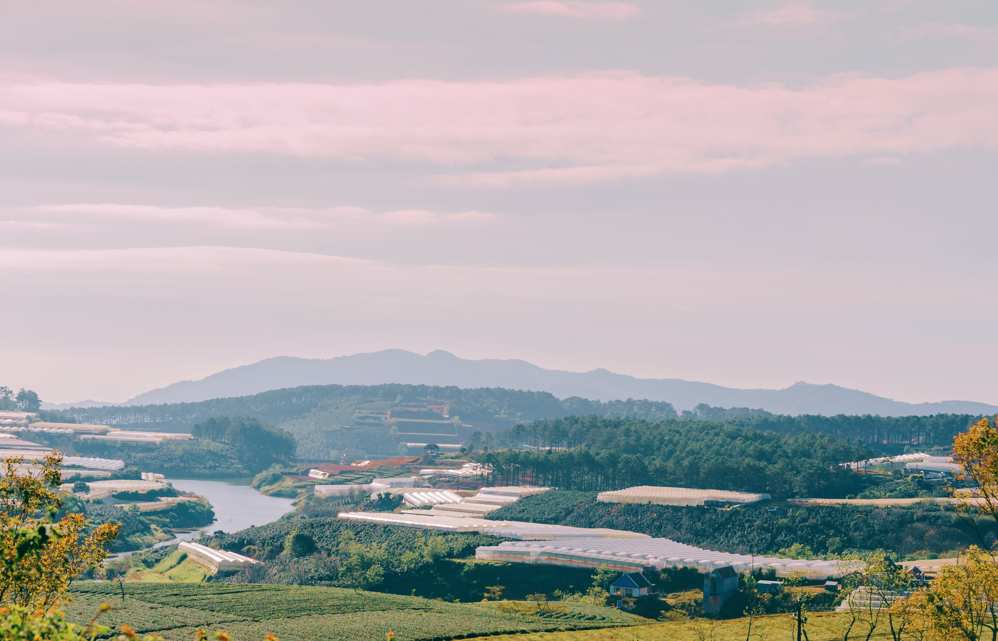 Kostenloses Stock Foto zu acker, ackerland, bäume, berg