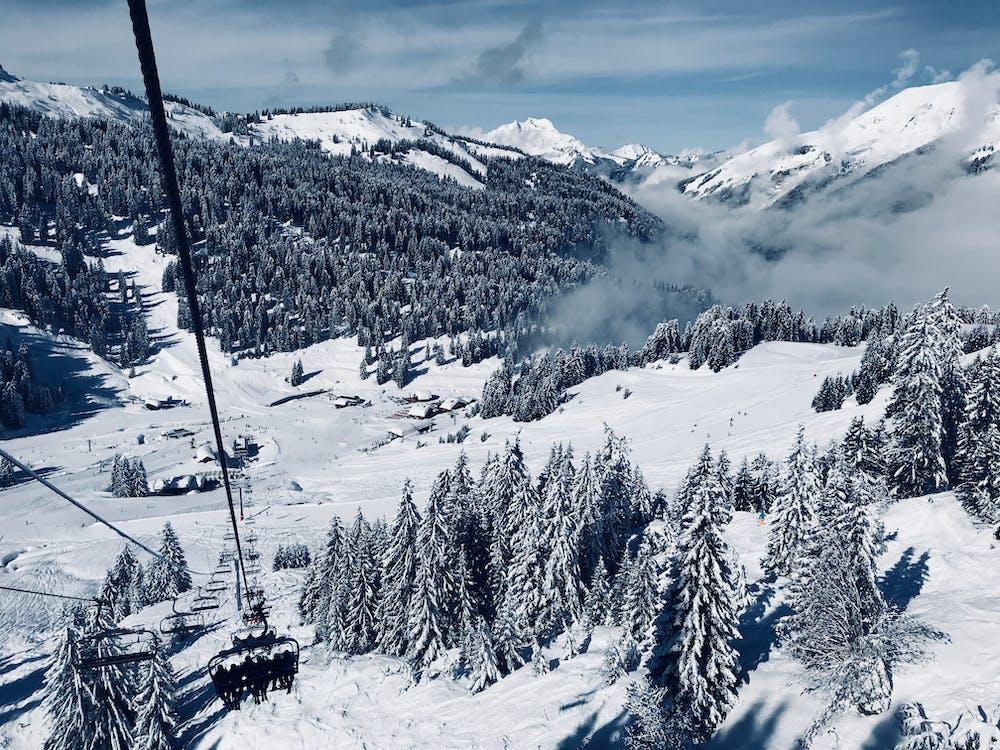 alpský, denní, denní světlo