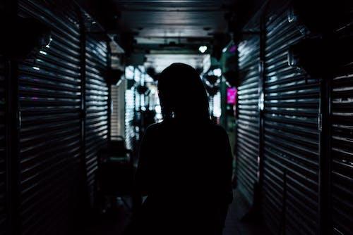 Základová fotografie zdarma na téma osoba, podsvícení, tmavý