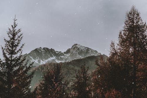 Бесплатное стоковое фото с гора, дневной свет, живописный, зима