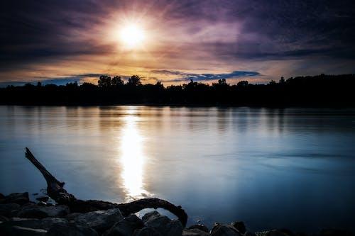 Foto profissional grátis de água, ao ar livre, árvores, cair da noite