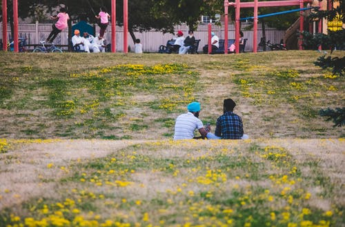Two Men Sitting on Yellow Flower Field in the Park
