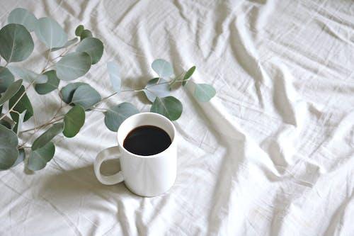 Základová fotografie zdarma na téma aromatický, barva, bílá, černá káva