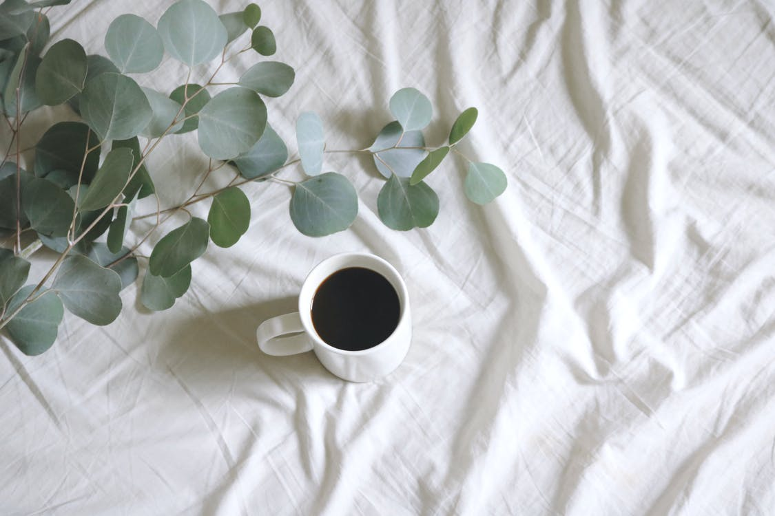 Photo of White Ceramic Mug with Coffee Next to Silver Dollar Gum Tree Leaves on White Bed-sheet
