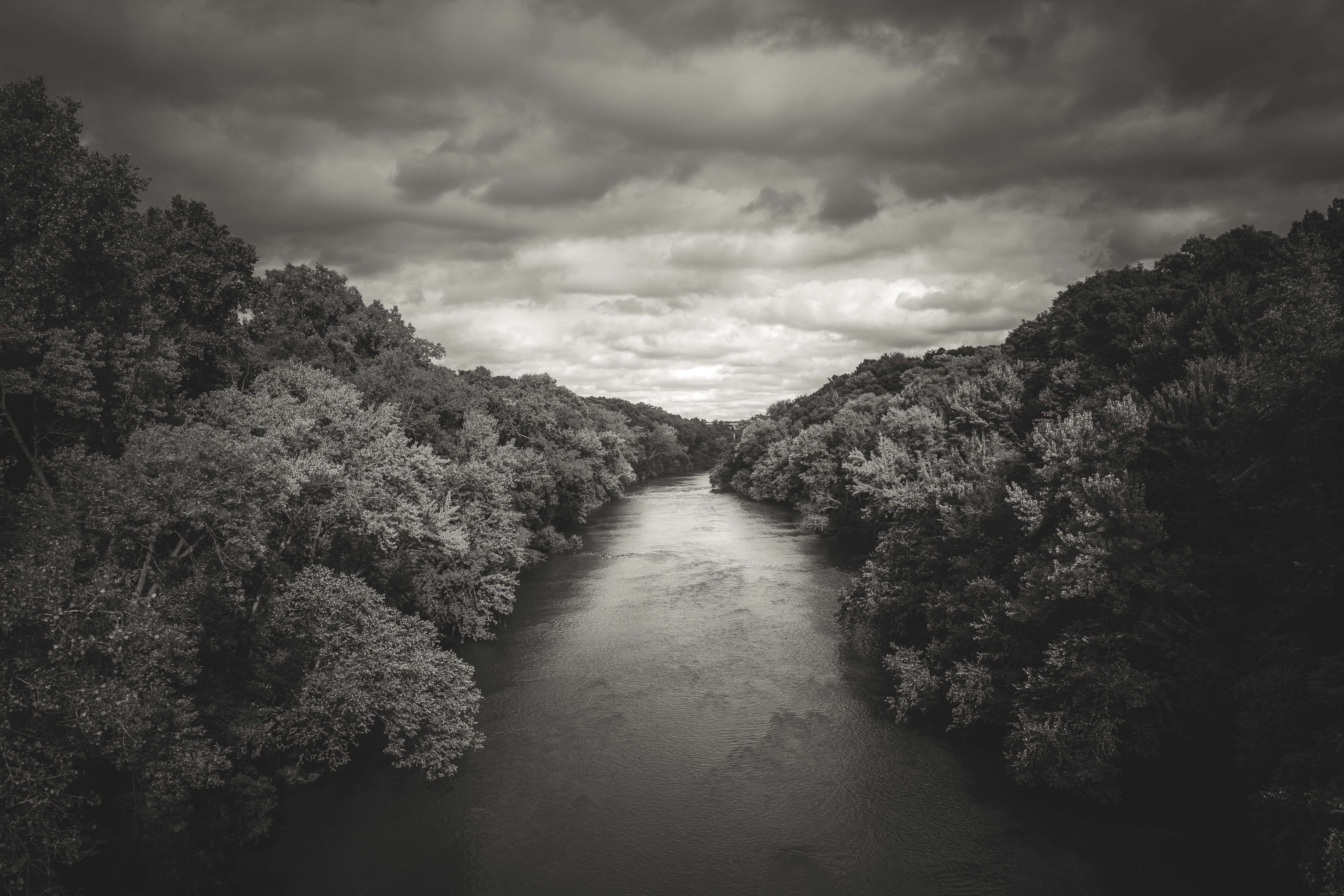 Free stock photo of storm, trees, river, faded
