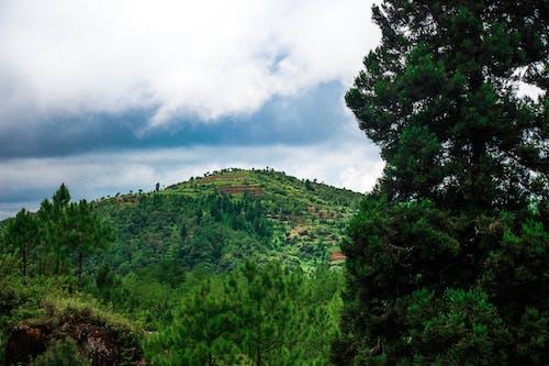 Foto d'estoc gratuïta de cel, muntanyes, natura, paisatge