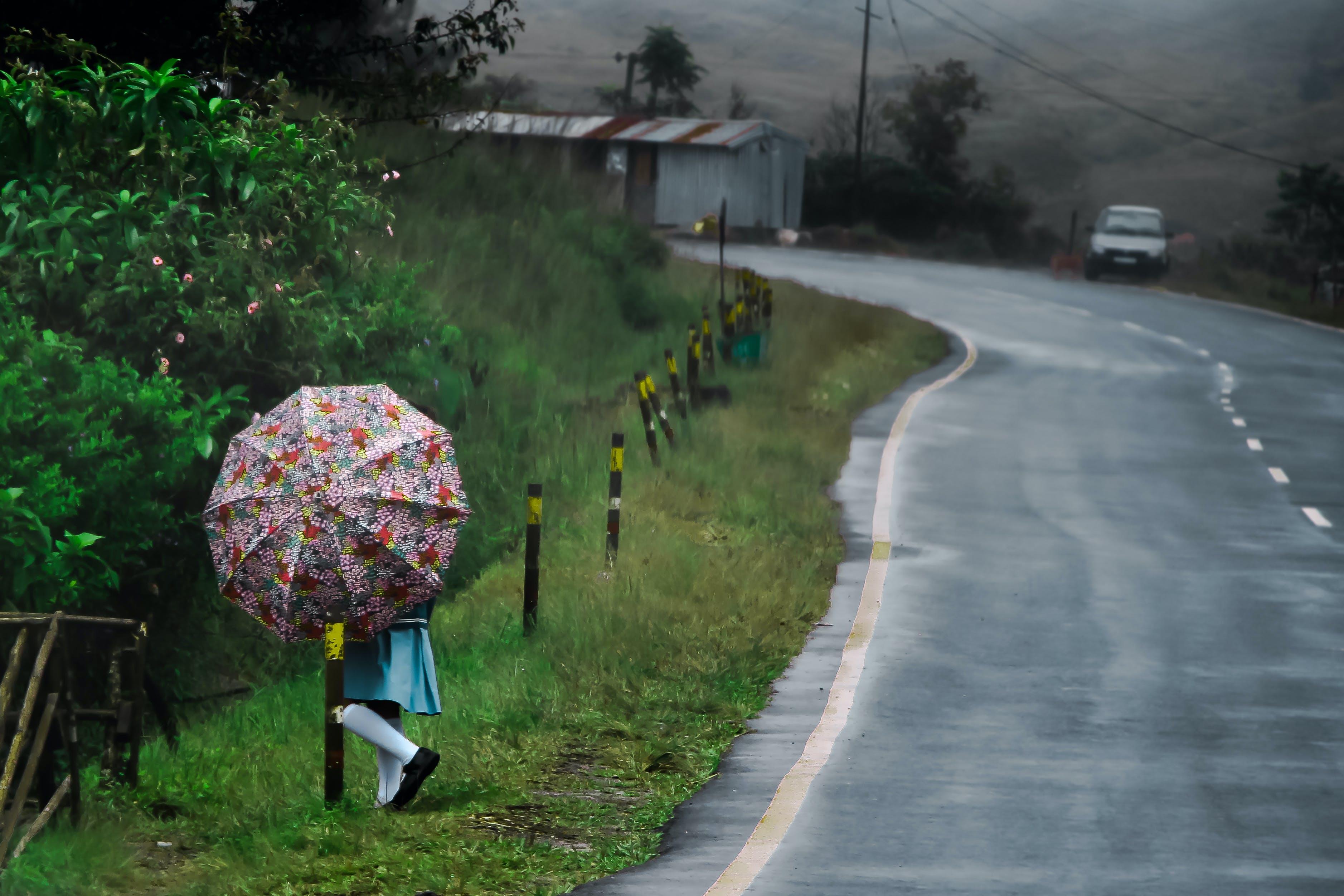 Free stock photo of landscapes, nature, rain, umbrella