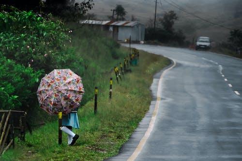 Gratis lagerfoto af landskaber, natur, paraply, regn