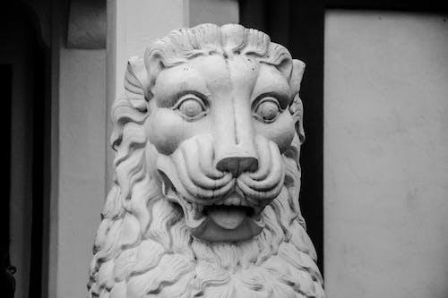 Gratis lagerfoto af arkitektur, dyr, figur, løve