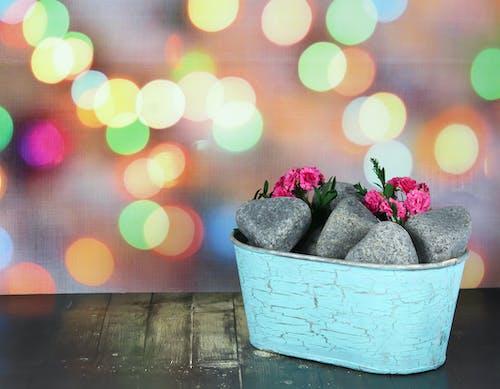 Ilmainen kuvapankkikuva tunnisteilla kivet, kukat, pikkukivet, puupöytä