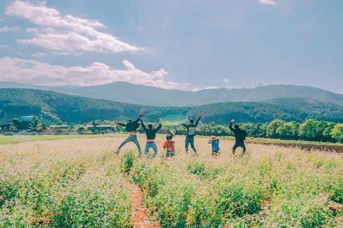 Foto d'estoc gratuïta de amics, assolellat, camp, camps de cultiu