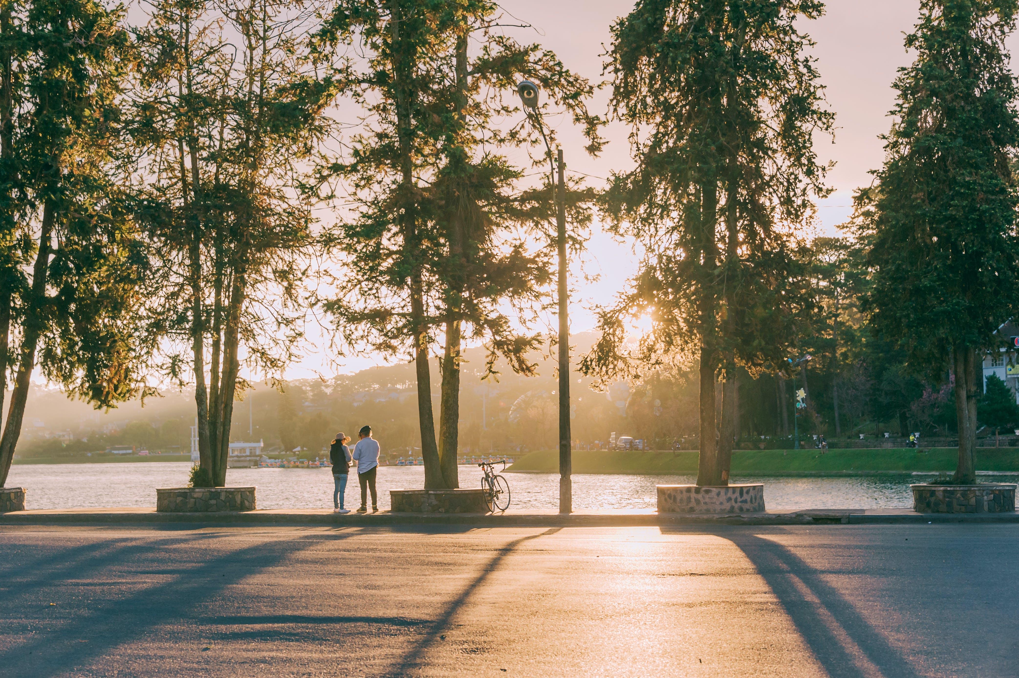 Immagine gratuita di alba, luce del giorno, ora d'oro, parco