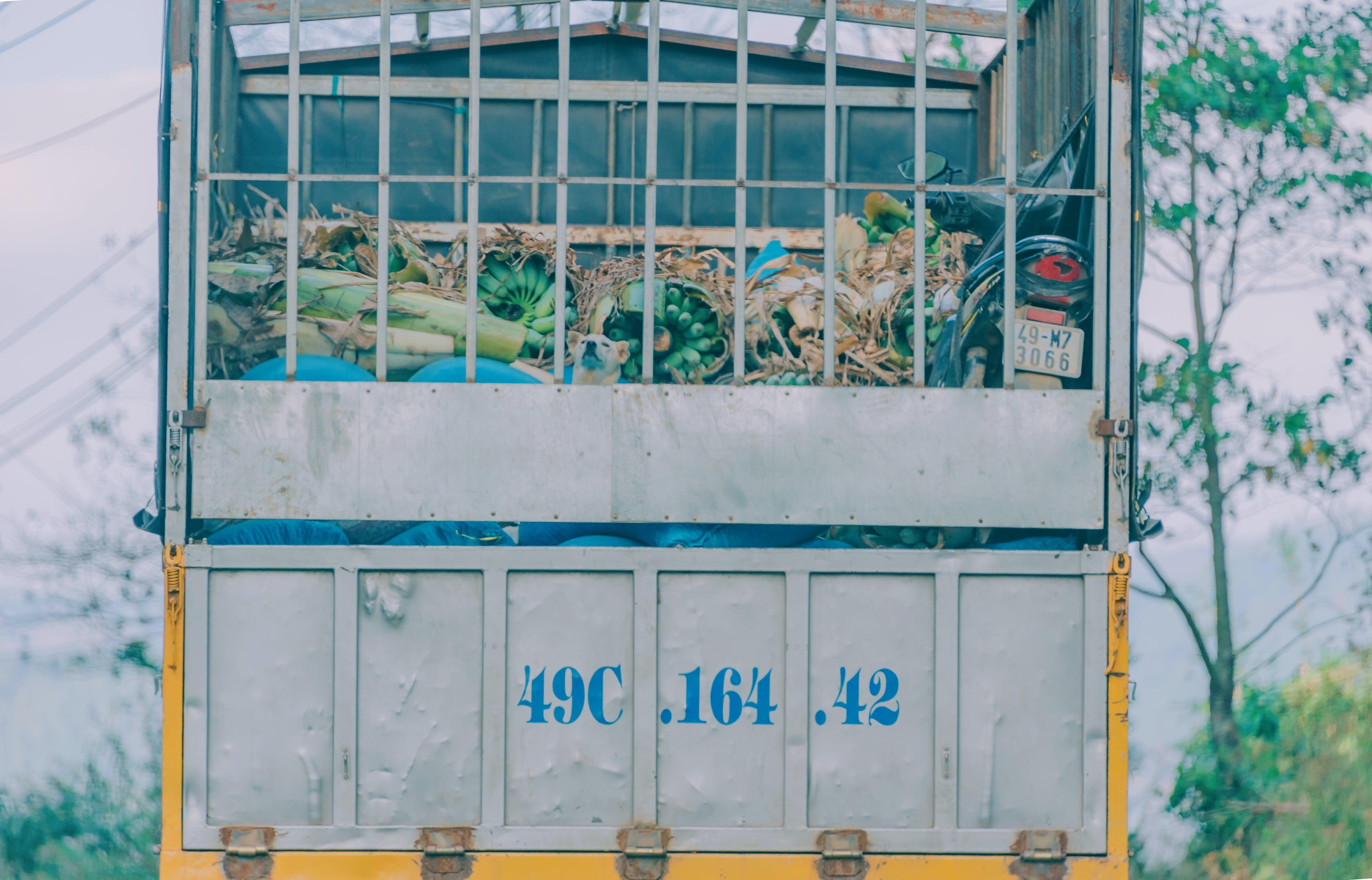 Gray and Yellow Metal Garbage Bin