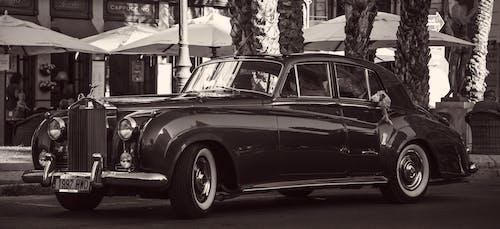 Fotobanka sbezplatnými fotkami na tému 1961, čierna a biela, krásny, Rolls Royce